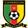 Kamerun paita 2018