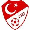 Turkki paita 2018