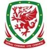 Wales lasten paita